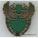 13° Régiment de Dragons Parachutistes RDP Brevet Formation de recherche aéroportée