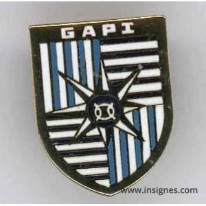 GAPI Pin's