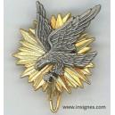 Etat-Major de l'Armée de l'Air (épingle)