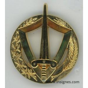 RCA République CentrAfricaine Insigne de béret