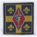 10° Division Blindée Tissu