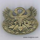 Brevets Qualification Logistique GS 1878 bronze Arthus-Bertrand